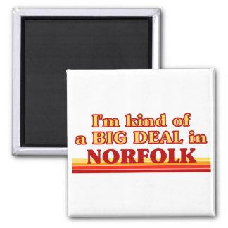 I am kind of a BIG DEAL in Norfolk Magnet