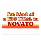 I am kind of a BIG DEAL in Novato Postcard