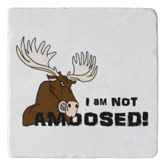 I am Not Amoosed Angry Moose Trivet
