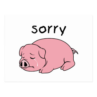 I am so Sorry Crying Weeping Pink Pig Stamp Cards Postcard