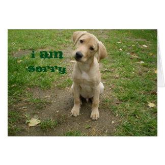 I am Sorry Yellow Lab Puppy Card