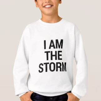 I am the storm sweatshirt