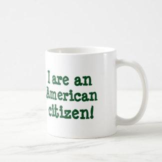 I are an American citizen! mug