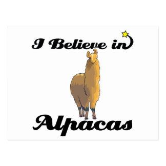 i believe in alpacas postcard