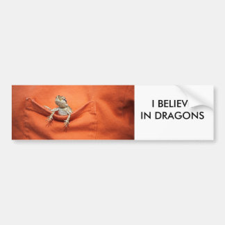 I believe in dragons bumper sticker bearded dragon