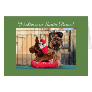 """I believe in Santa Paws"" Christmas Yorkie card"