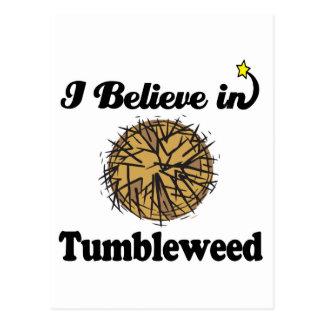 i believe in tumbleweed postcard