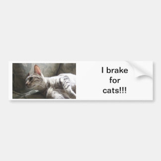 I Brake For Cats Bumper Sticker