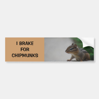 I Brake for Chipmunks Bumper Sticker