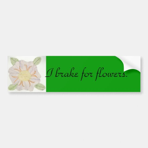 I brake for flowers. bumper stickers
