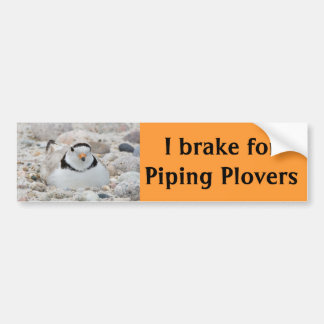 I brake for Piping Plovers Car Bumper Sticker