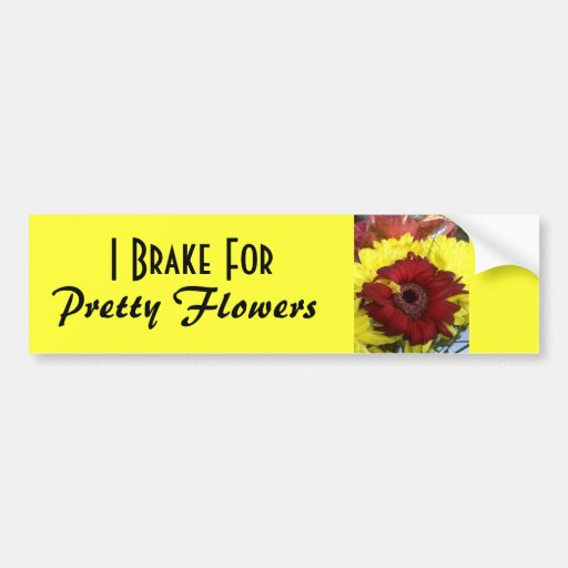 I Brake for Pretty Flowers Bumper Stickers