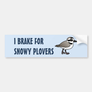 I Brake for Snowy Plovers Bumper Sticker