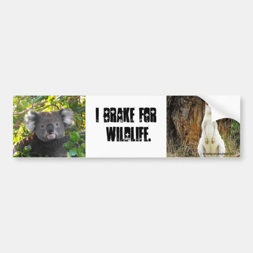 I brake for Wildlife Bumper Stickers