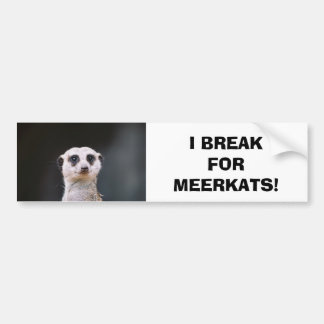 I Break for Meerkats! Bumper Sticker