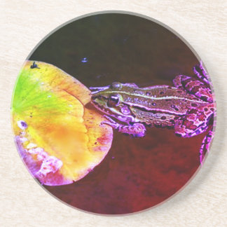 I can see you Frog Coaster