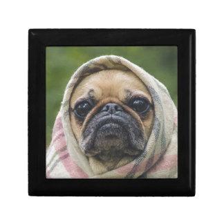 I Come in peace pug dog Gift Box