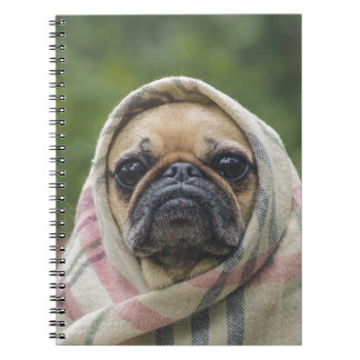 I Come in peace pug dog Notebook
