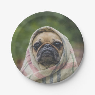 I Come in peace pug dog Paper Plate