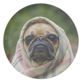 I Come in peace pug dog Party Plate