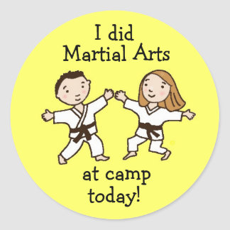 I did Martial Arts at Camp Today stickers