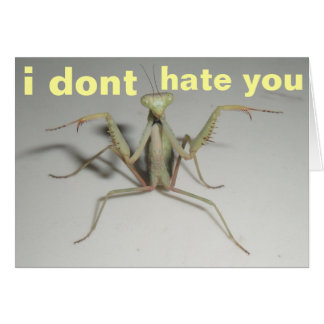 i dont hate you greeting card