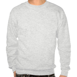 I dont know pull over sweatshirt