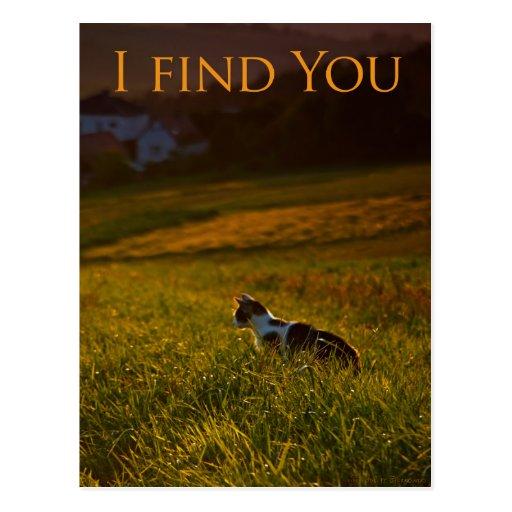 I find You - Postcard