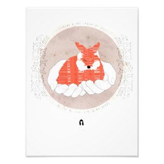 I Fount A Fox Art Photo