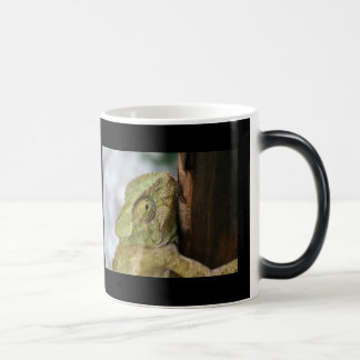I Get Very Absorbed In My Surroundings Coffee Mugs