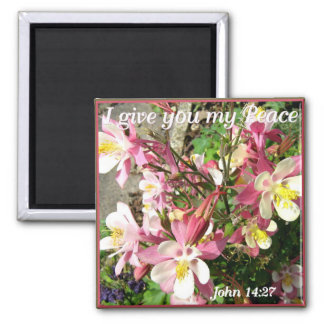 'I give you my Peace!' Magnet