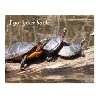 I Got Your Back Turtles Postcard