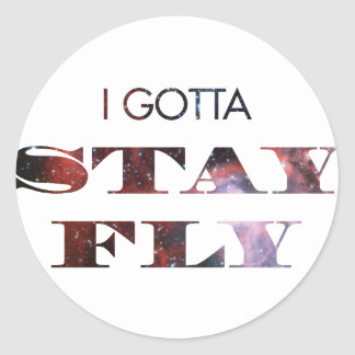 I Gotta Stay Fly Classic Round Sticker
