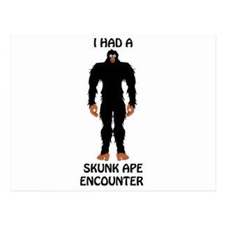 I HAD A SKUNK APE ENCOUNTER POSTCARD