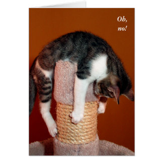 I Hang in There Humorous Cat Support Card