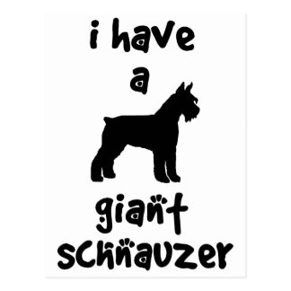 I Have A Giant Schnauzer Postcards