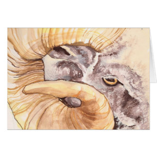i have my eye on ewe card