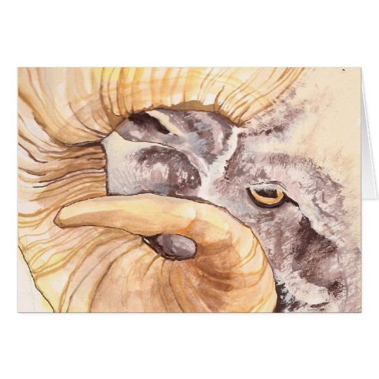 i have my eye on ewe card