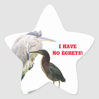 I Have No Egrets! Star Sticker