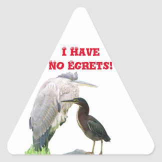I Have No Egrets! Triangle Sticker
