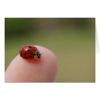 I Hear You Caught a Bug Card