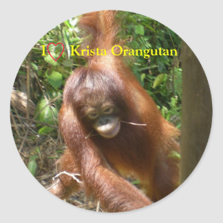 I Heart Orangutans Classic Round Sticker