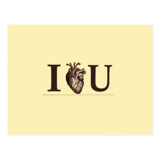 I Heart U Postcard
