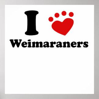 I Heart Weimaraners Poster