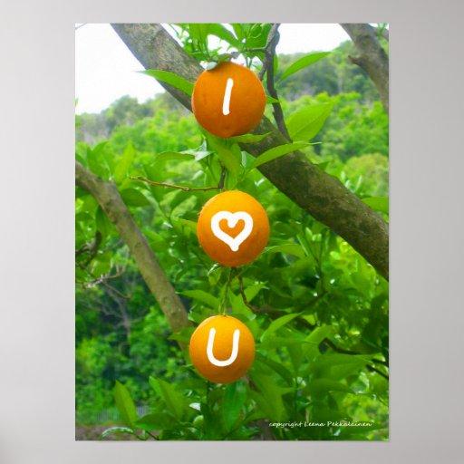 I Heart You Oranges Print