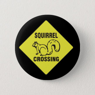 I icked a squirrel pin