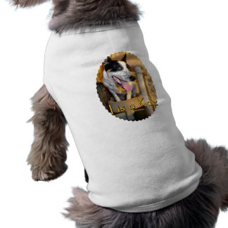 I Is A Katz Pet Clothing
