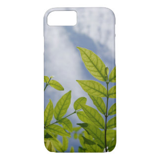 I keep the leaves cases ip 7