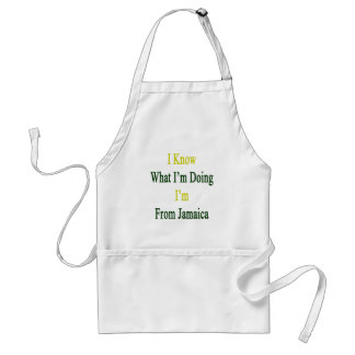 I Know What I'm Doing I'm From Jamaica Standard Apron