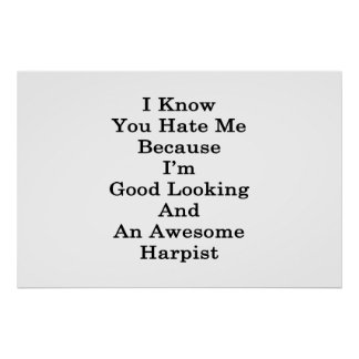 I Know You Hate Me Because I'm Good Looking And An Poster